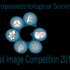 Microfossil-image-comp-2015