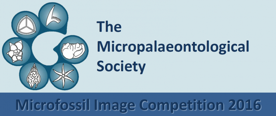 microfossil image competition 2016