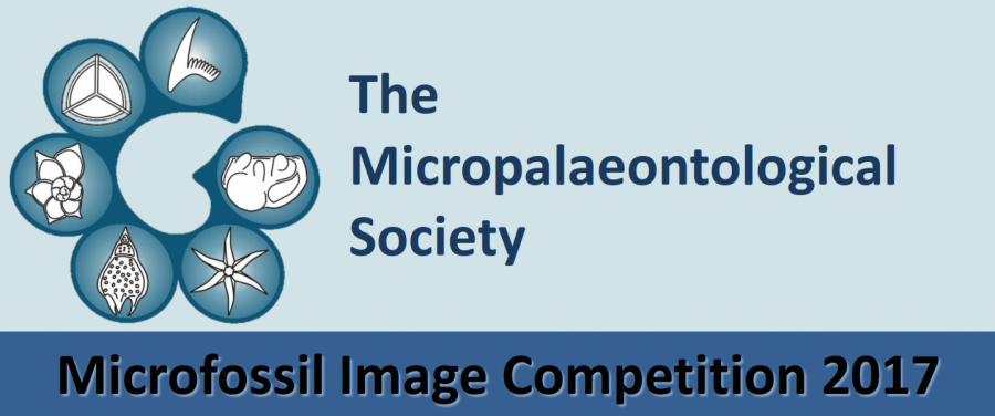 Image Comp Poster 2017